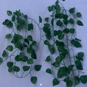 leaf strand